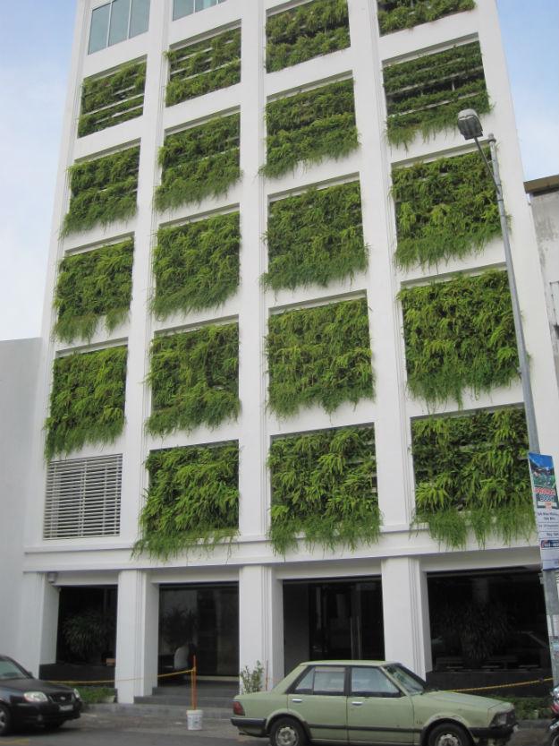 fern building
