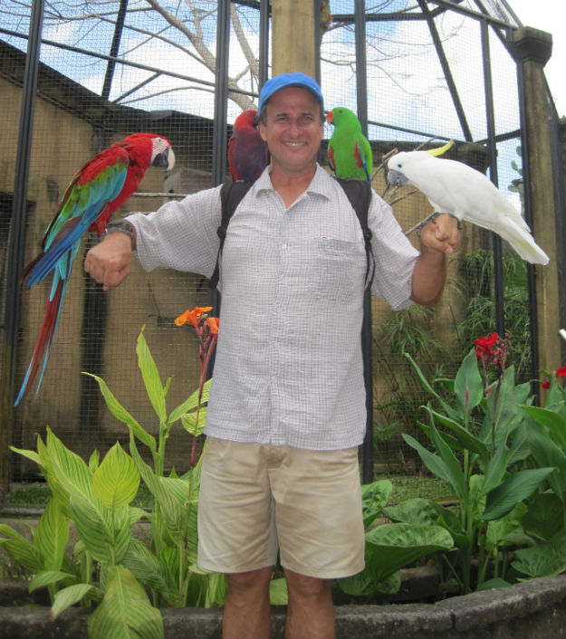 kent birds