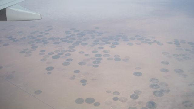 saudi circles
