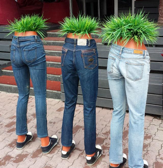 pants plants