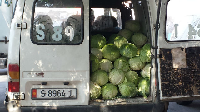 cabbage car
